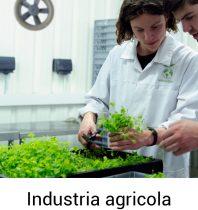 Industria agricola-100