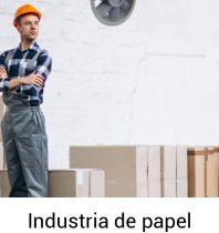 Industria de papel-100