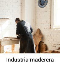 Industria maderera-100